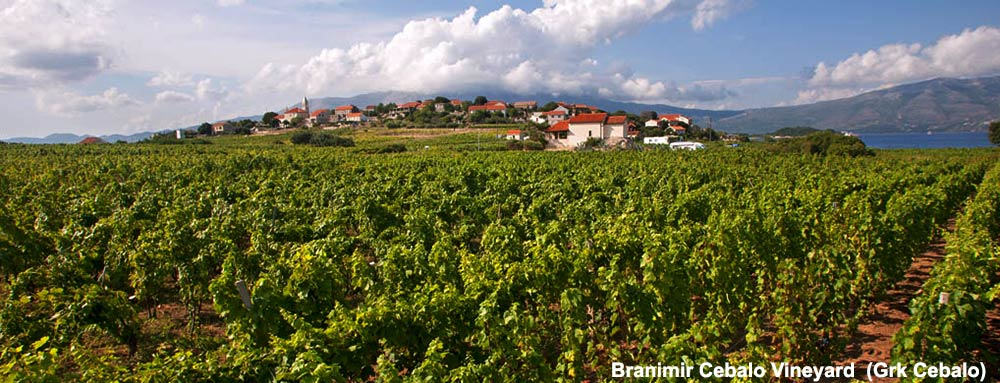Branimir Cebalo – (Grk Cebalo) Winery